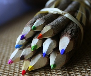 Branch-and-twig-assorted-colored-pencils-m