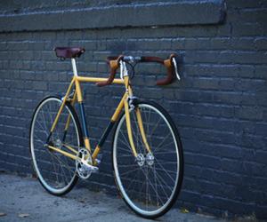 Brookyln-horse-cycles-m