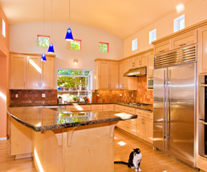 Cat-likes-new-kitchen-barrel-ceiling-clerestory-windows-m