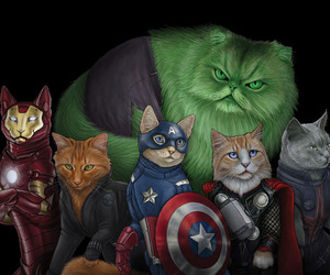 Cat-superhero-series-m