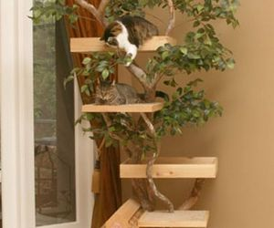 Cat-tree-house-by-big-apple-pet-supply-m