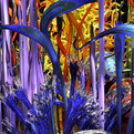 Chihuly-collection-designed-by-alberto-alfonso-aia-3-s