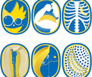 Chiquita-brand-sticker-design-contest-and-history-m
