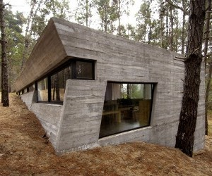 Concrete-forest-home-by-bak-arquitectos-m