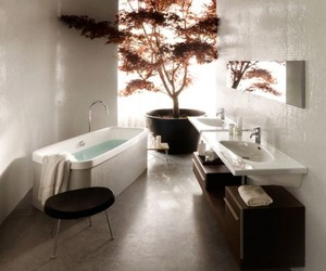 Contemporary-bathrooms-by-laufen-m