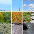 Convert-is-a-nyc-based-green-roof-service-and-the-site-was-designed-by-swissmiss-s