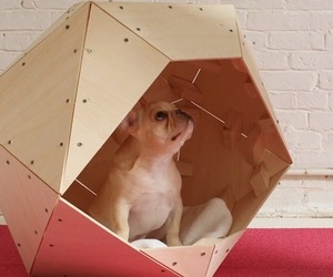 Cool-dog-house-designs-m