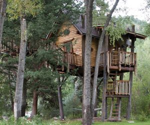 Crystal-river-treehouse-by-green-line-architects-m