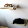 Curve-wall-mounted-cat-beds-by-akemi-tanaka-s