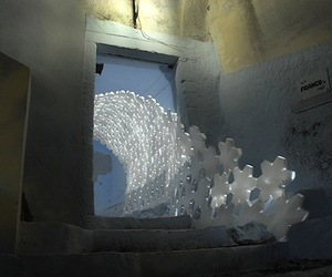 Daphne Installation by 24 Degrees Studio