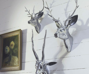 Deer-stag-heads-with-antlers-m