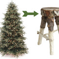 Discarded-christmas-trees-become-stools-s
