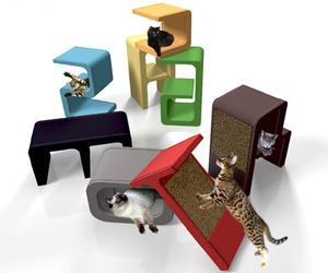 Distinctive-alphabet-catworks-m