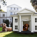 Dog-homes-by-best-friends-homes-s