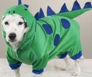Dogzilla-dog-costume-m