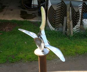 Dolphin-vertebra-sculpture-m