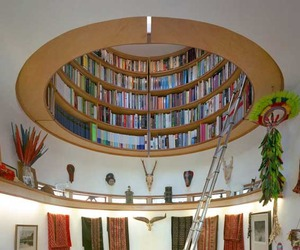 Dome-shaped-bookshelf-by-travis-price-architects-m