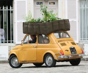 Eco-friendly-mobile-bacsac-garden-containers-m
