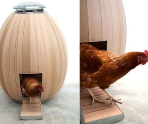 Egg-shaped-nogg-chicken-coop-is-sculpturally-cool-m