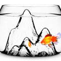 Fishscape-fishbowl-by-gaia-and-gino-s