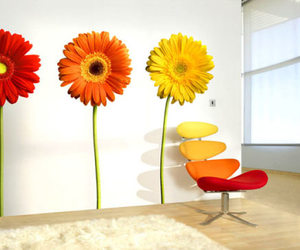Flamboyant Wallflower Photographic Wall Decals