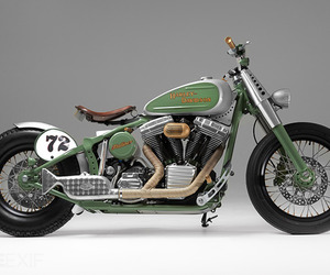 Flatliner-by-shaw-speed-custom-m