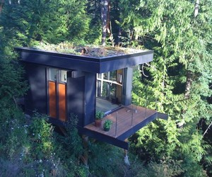 Forest-office-space-in-washington-m