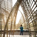 Forest-pavilion-by-narchitects-s