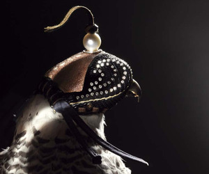Formal-falconry-diamond-studded-hawks-hoods-m