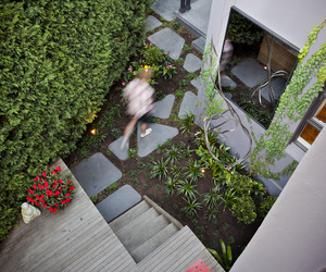 Funky-courtyard-design-for-paddington-terrace-m