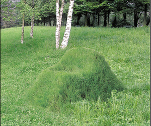 Furniture-that-grows-terra-outdoor-chair-m