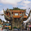 Gajumaru-tree-house-in-japan-s