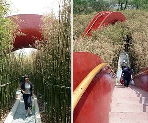 Garden-of-10000-bridges-m