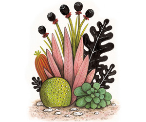 Geffen Refaeli | A Happy Cactus is an Illustrated Cactus	 
