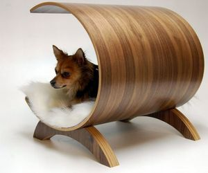 Get-your-pooch-a-soft-and-cosy-pet-bed-cum-recliner-m