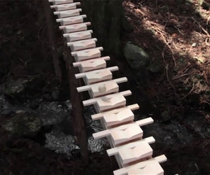 Giant-wooden-xylophone-video-m