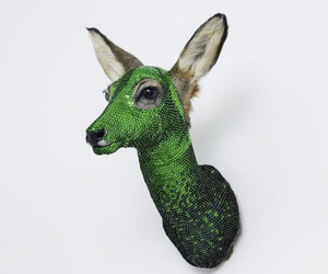 Glamorous-taxidermy-m