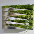 Grass-mirror-by-h2o-architectes-s