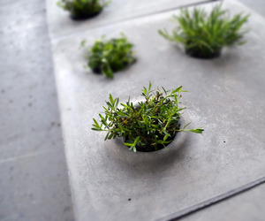 Grey-to-green-pavers-m