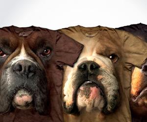 Hyper-realistic-dog-t-shirts-m