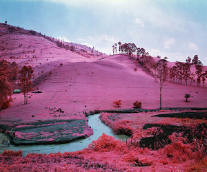 Infra, Photography Series by Richard Mosse