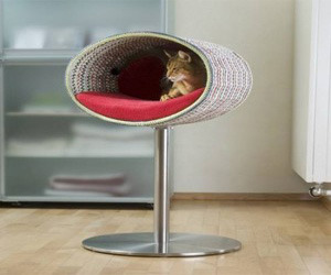 Interesting-unique-cat-bed-accessory-m
