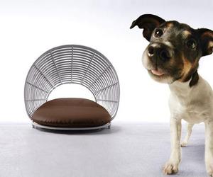Kenneth-cobonpues-modern-pet-lounge-the-operetta-m