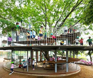 Kindergarten-designed-around-japanese-tree-m