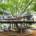 Kindergarten-designed-around-japanese-tree-s