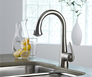 Ladylux3-plus-pull-out-faucet-from-hansgrohe-m