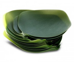 Leaf-dishes-m