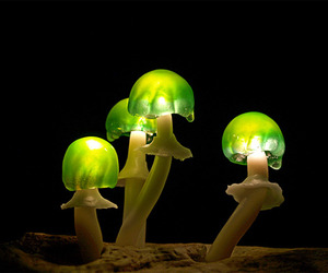 Led-mushroom-lights-m