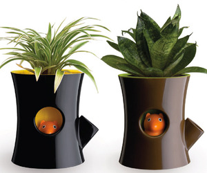 Log-and-squirrel-plant-pot-wins-at-tiff-2011-m