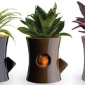Log-and-squirrel-plant-pot-wins-at-tiff-2011-s